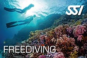 freediving sm