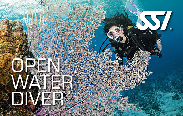 open water diver big