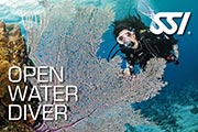 open water diver sm